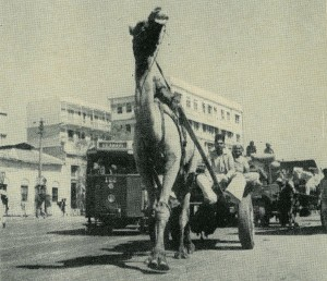 Karachi 'a one camel town', Life Magazine, Jan 1948, Pakistan