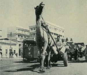 Karachi 'a one camel town', Life Magazine, Jan 1948, Pakistan