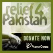 Relief 4 Pakistan
