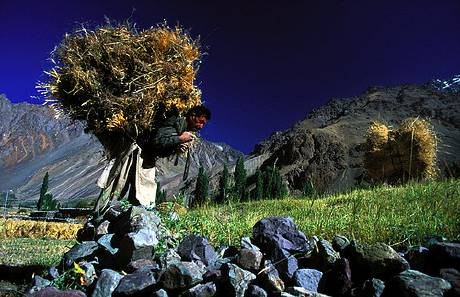 Rural Worker Northern Pakistan